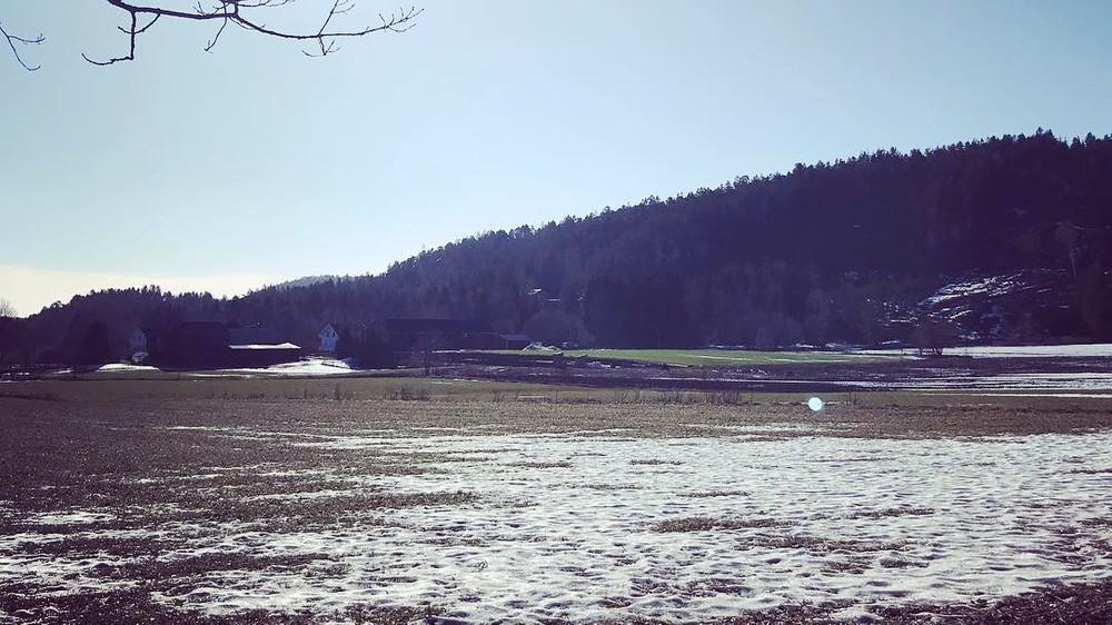Norvège : record de chaleur pour un mois de février