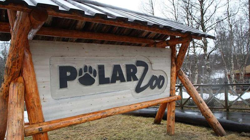 Découvrez Polar Park, le zoo le plus au nord du monde