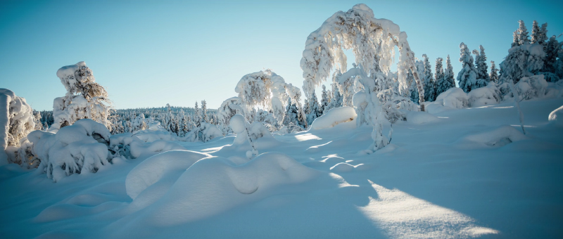 Les splendeurs de Norvège, à consommer sans modération !