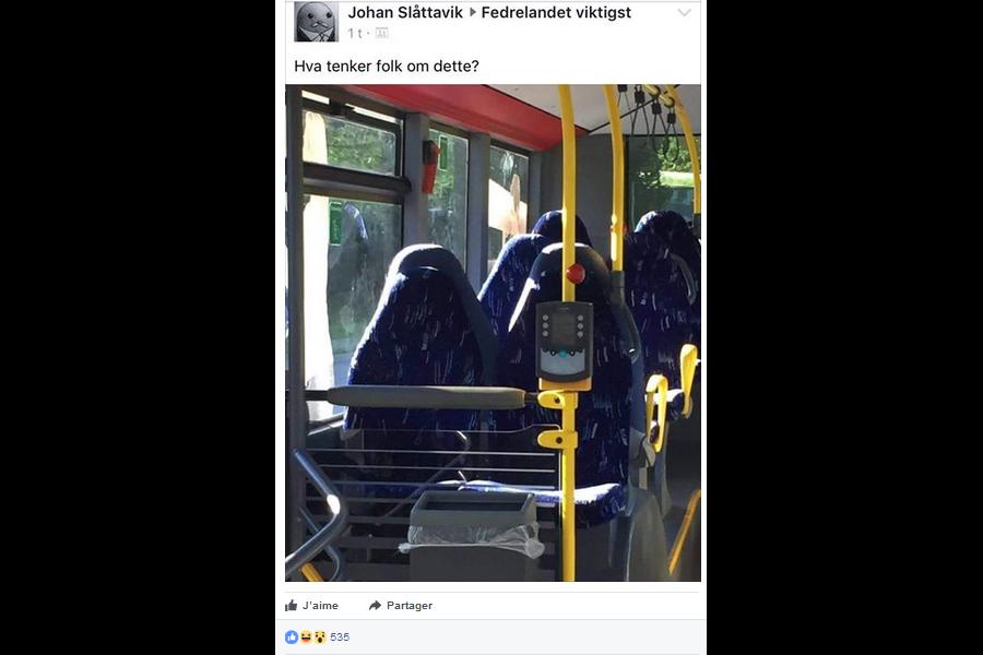 Des nationalistes norvégiens deviennent la risée du web