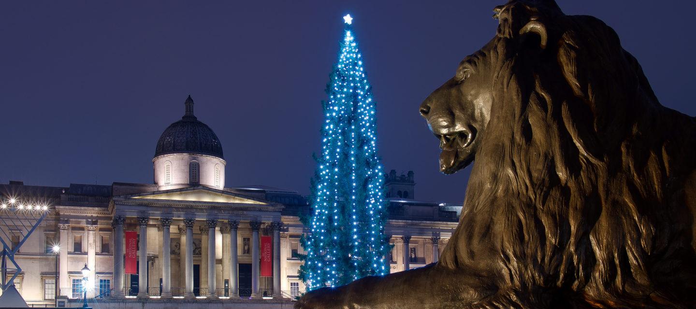 Inauguration du sapin de Noël norvégien à Londres