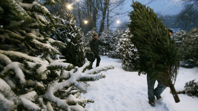 Noël en Norvège sous la neige ? Peu d'espoir sauf dans le Grand Nord